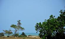 View dari Bilik
