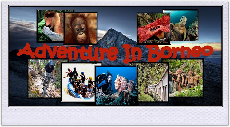 Adventure In Borneo