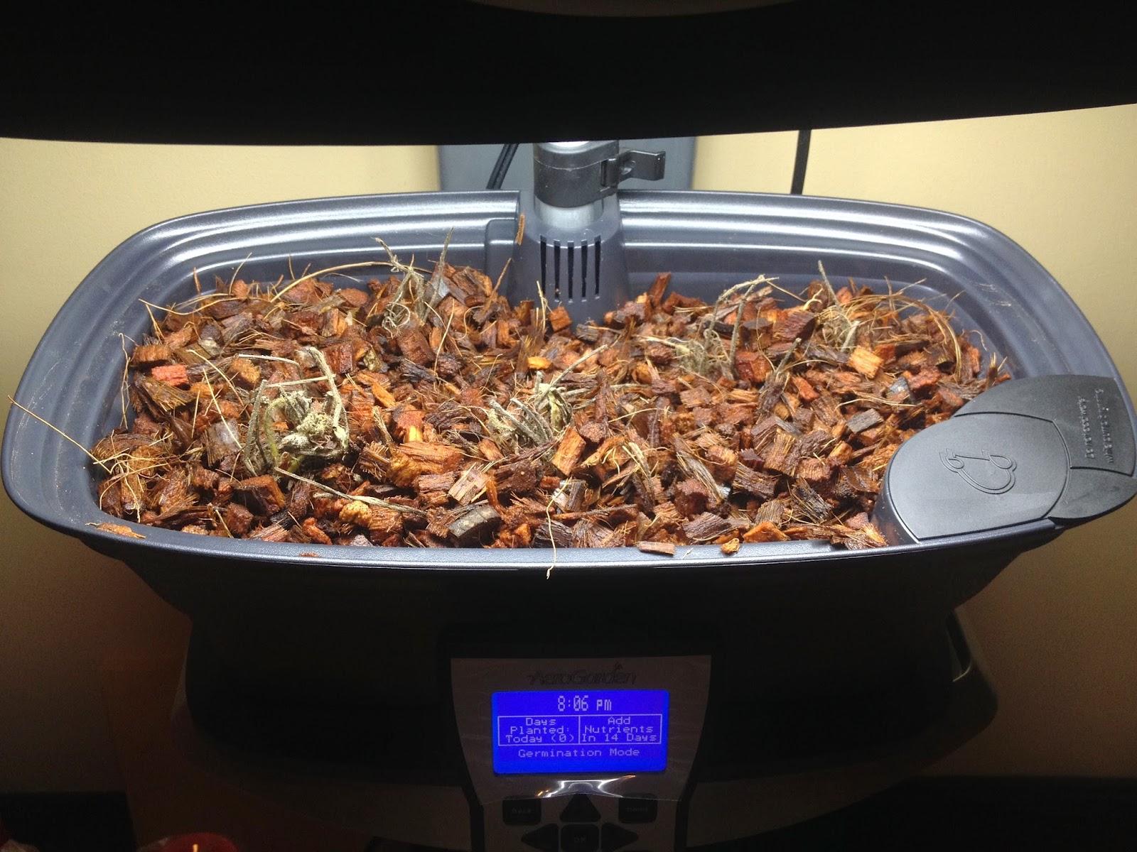 September 2014 | Indoor Gardening - My Aerogarden and Houseplant Blog