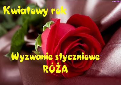 Styczniowa róża