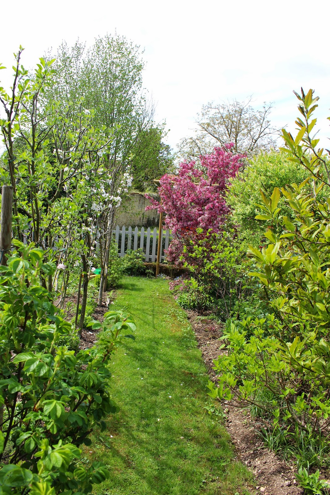 Notre jardin secret d co et vie du jardin - Comment passer en floraison ...