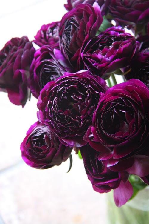 hoa mao luong diu dang cho bo hoa cuoi 8