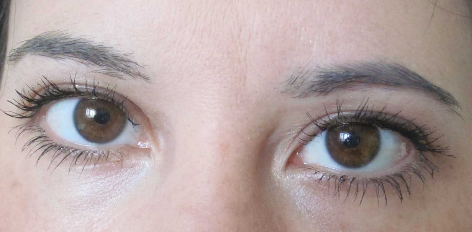 Jessica Jean Myers Rapid Lash Review For Eyebrows