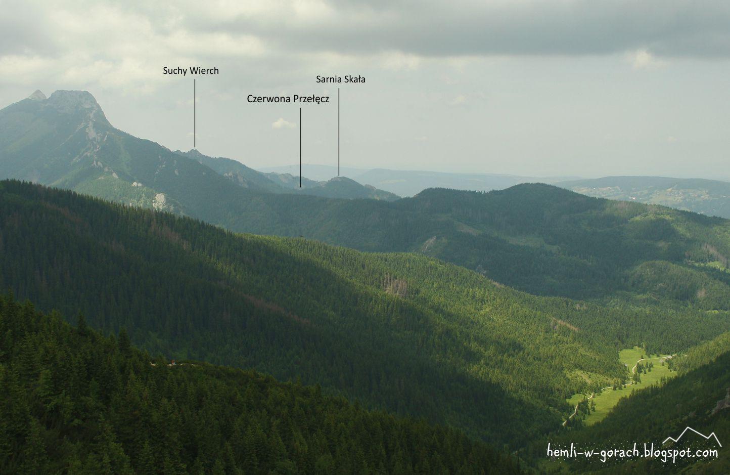 Widok na Czerwoną Przełęcz