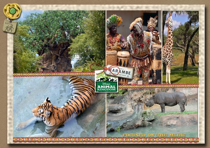 Focused on the Magic Animal Kingdom Collage