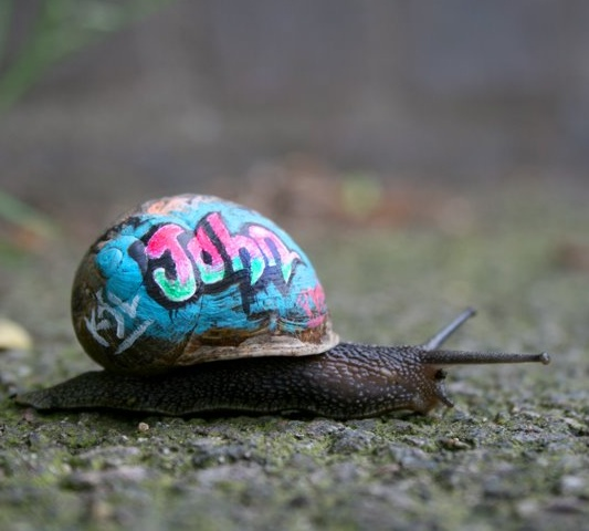 Inner city snail by Slinkachu