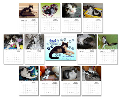 Anakin The Two Legged Cat 2014 Calendars
