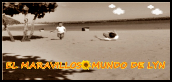 EL MARAVILLOSO MUNDO DE LYN