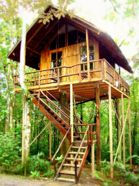 I love tree house tree houses hotel costa rica for Jungle house costa rica