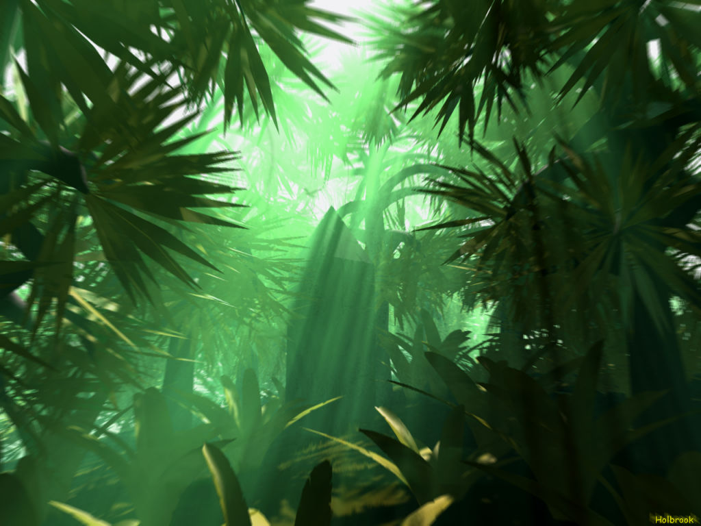 Background Jungle ~ Background Kindle Pics