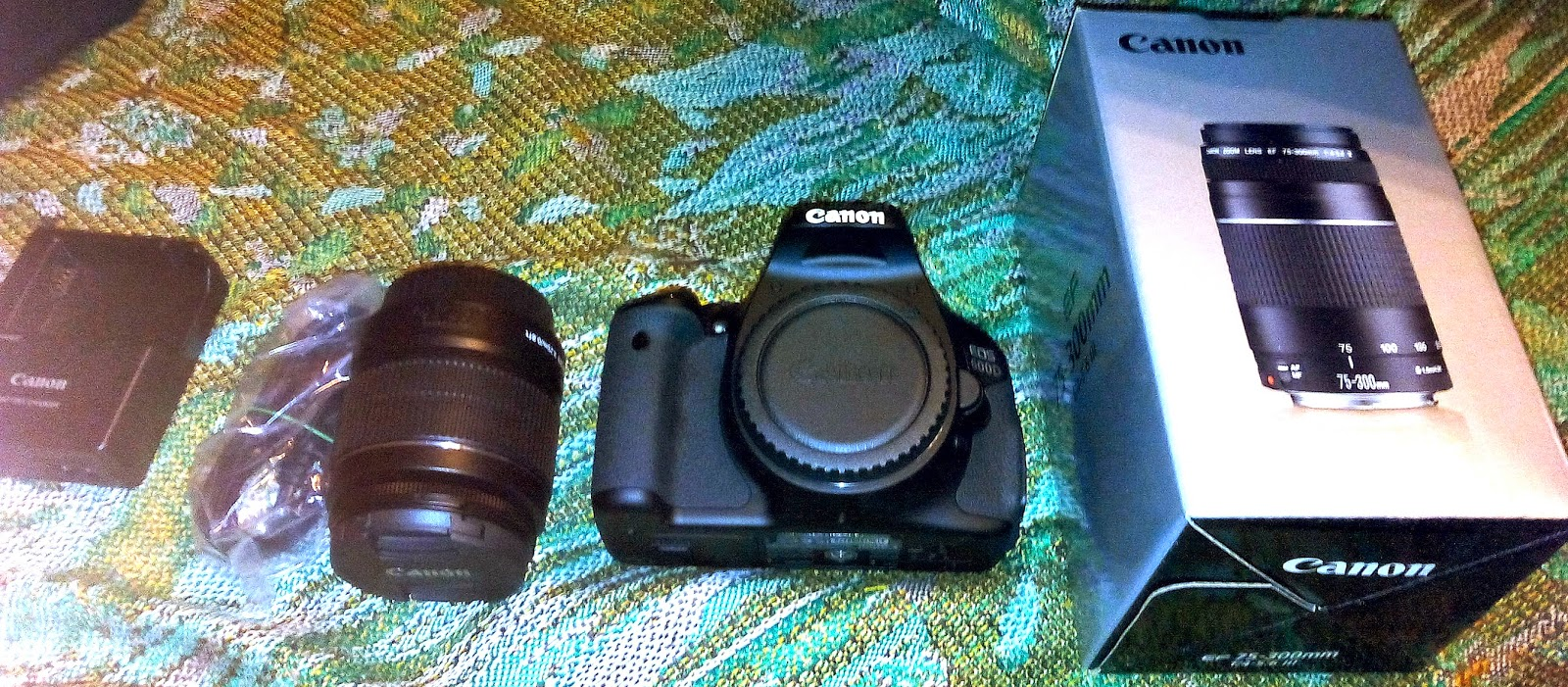Canon EOS 600D комплектация