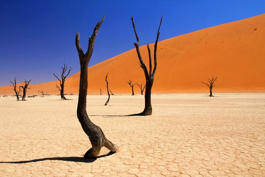 Dunes de Sossusvlei dans le désert du Namib en Namibie