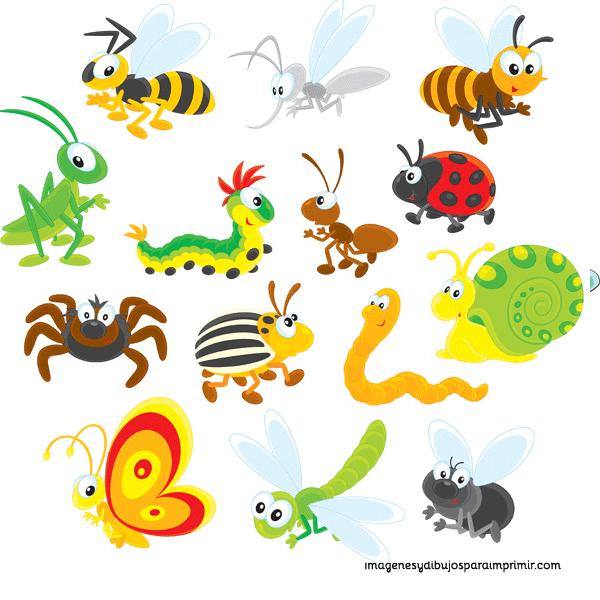 Imprimir insectos imagenes y dibujos para imprimir - Wandsticker name ...