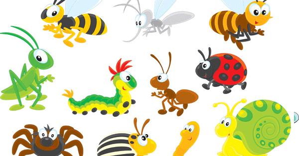 Imprimir insectos - Fotos de insectos para imprimir ...