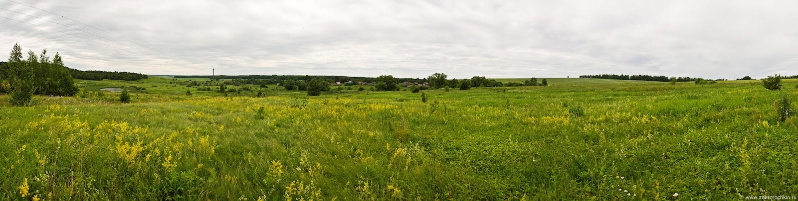 Типичный российский пейзаж средней полосы - луг, лес, деревня