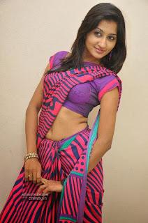 Actress-Akshaya-Stills-at-Adi-Lekka-Audio-Success-Meet