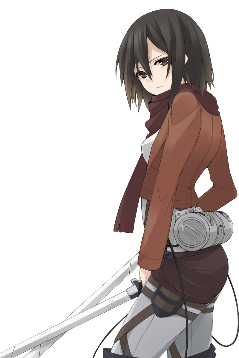 Anime Wikia9 One Of The Most Famous Female Character In 2013 2014 Mikasa Ackerman