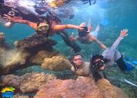 snorkeling karimunjawa place