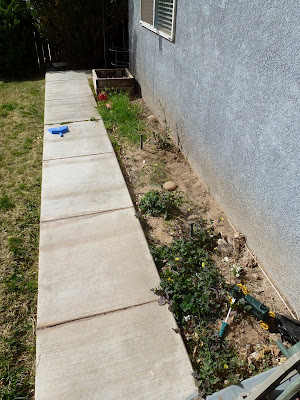 preparing a flower bed