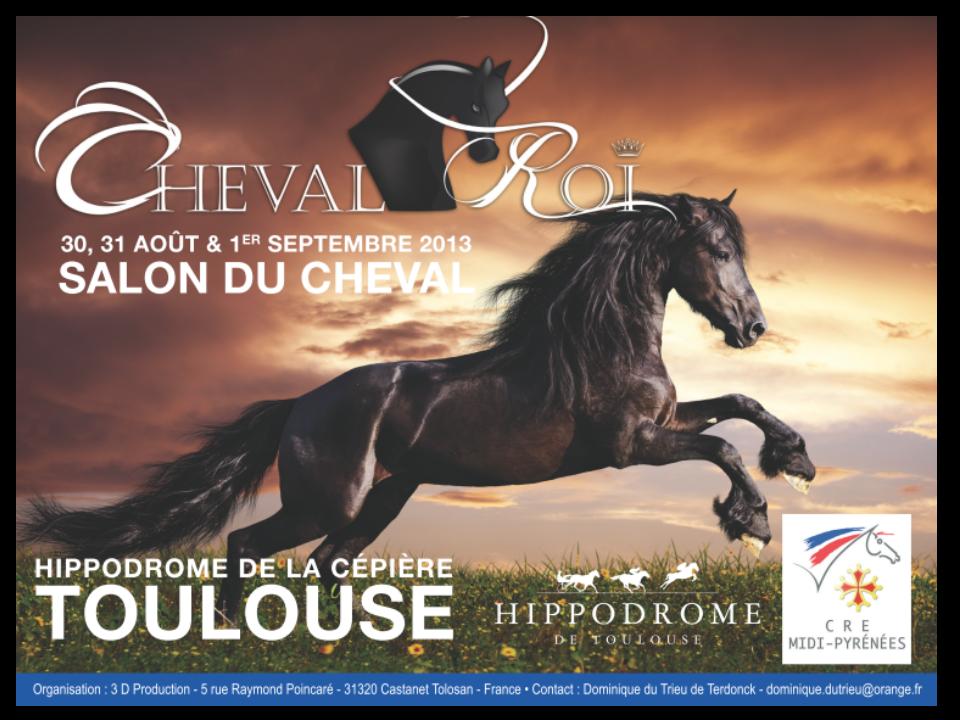 Le cheval roi toulouse du 29 ao t au 1 - Salon cheval toulouse ...