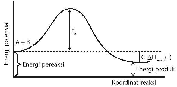 Pengertian kecepatan reaksi kimia rumus contoh soal faktor hubungan energi potensial dan koordinat reaksi ccuart Image collections