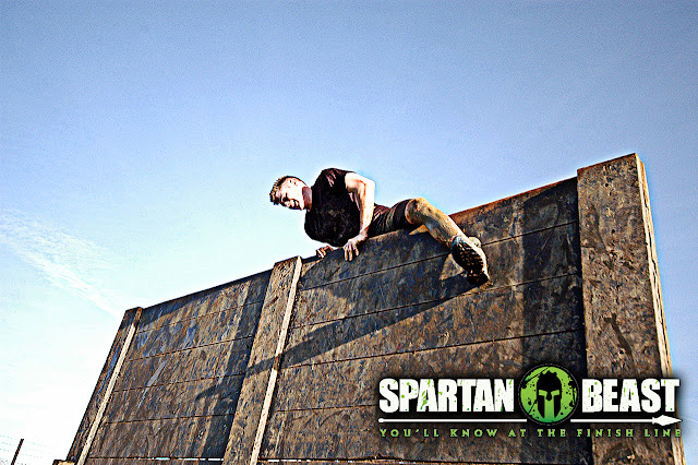 Spartand Beast wall