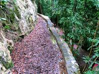 Canal del Fornot de Puigdomènec