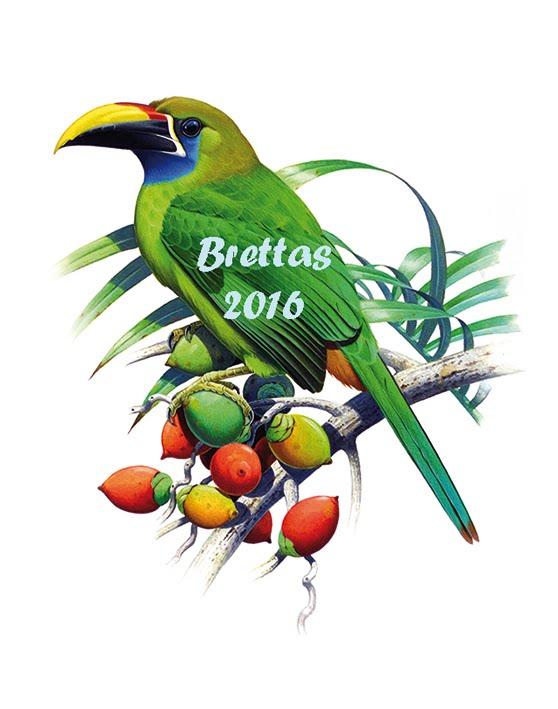 Aves da Costa Rica