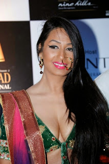 kashmira shah deep cleavage boobs show in half blouse
