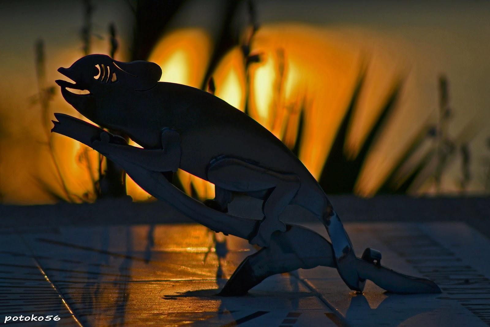 reloj de sol con el camaleon amaneciendo Rota