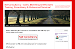 Sales & Marketing Consultancy