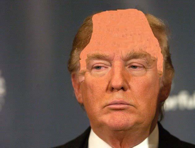 donald trump hair blowing. donald trump hair blow.