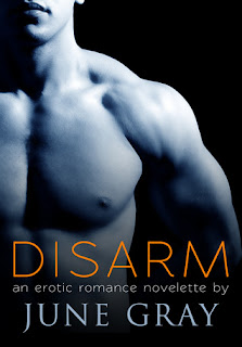Mini Review: Disarm by June Gray