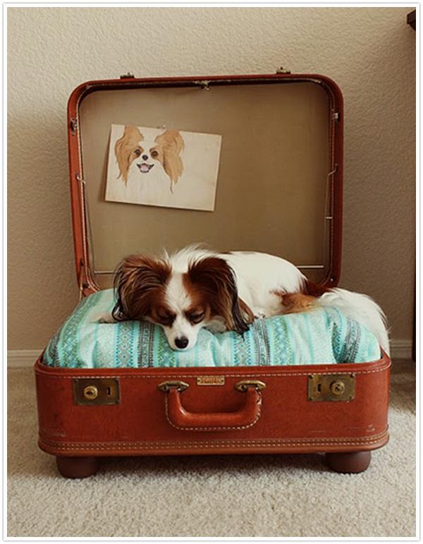 Diy suitcase pet beds sticky bee - Como hacer camitas para perros ...