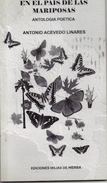 En el país de las mariposas, 2007.