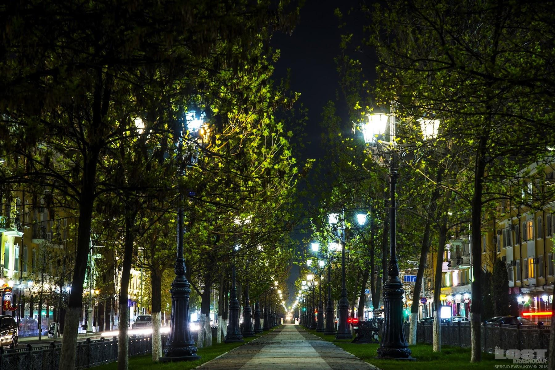 Night Chechnya