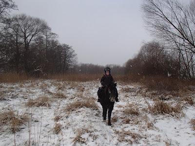 konie, kucyki, jazda konna, jazda w terenie, jazda konna dla dziecka, ferie zimowe, zima w Krakowie, zamieć śnieżna, śnieżyca