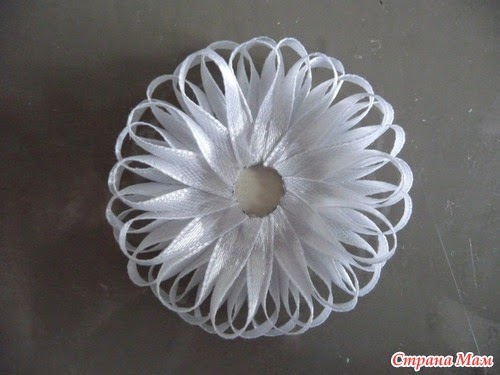 the flower of a narrow strip