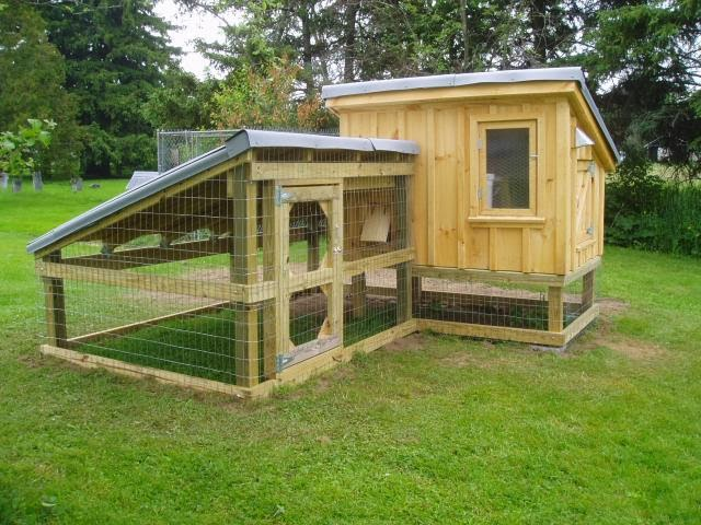 Chicken House Plans: Backyard Chicken Coop