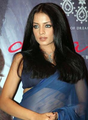 celina jaitley in blue transparent saree actress pics