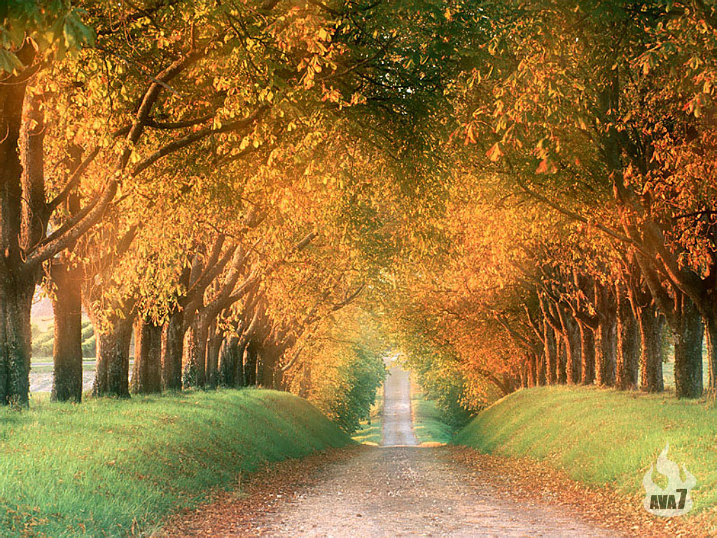 Autumn wallpapers hd beautiful autumn wallpapers hd