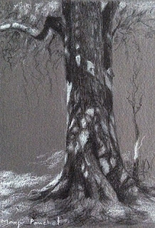 A charcoal sketching of a tree trunk by Manju Panchal