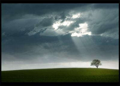 hoy quiero hablar sobre la esperanza para mí la esperanza es como ...