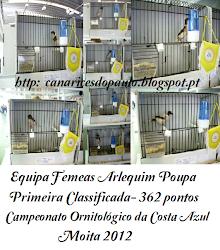 Arlequim Português- Equipa Femeas Poupa.