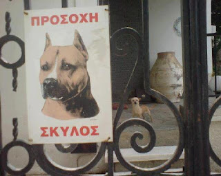 προσοχή σκύλος-τα φαινόμενα απατούν