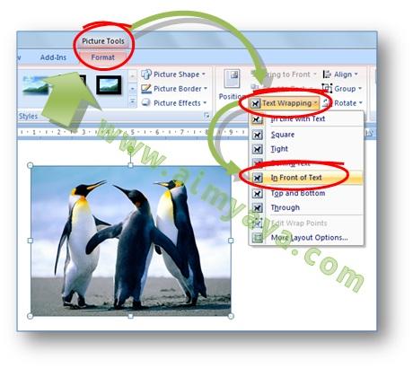 Gambar: Cara mengatur layout gambar di Microsoft Word 2007 melalui dialog Building Blocks Organizer
