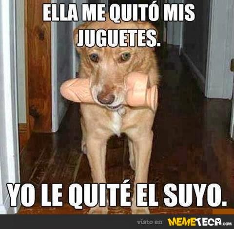 MUNDO FREAK  - Página 20 Animales_dog_ella-me-quito-mis-juguetes