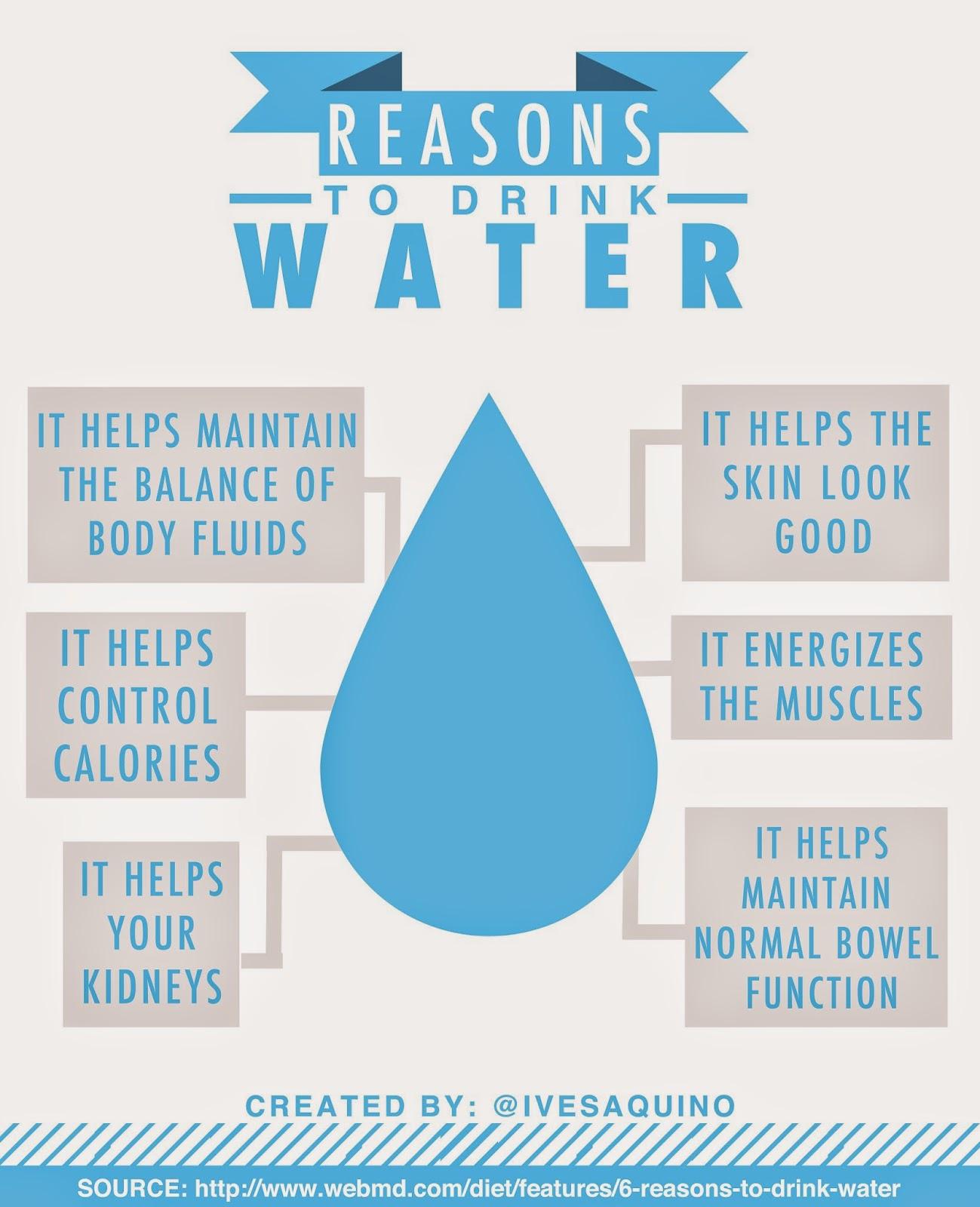 menjaga keseimbangan air, mengontrol kalori, menjaga ginjal dan kandung kemih, mempercantik kulit dan memberi energi otot