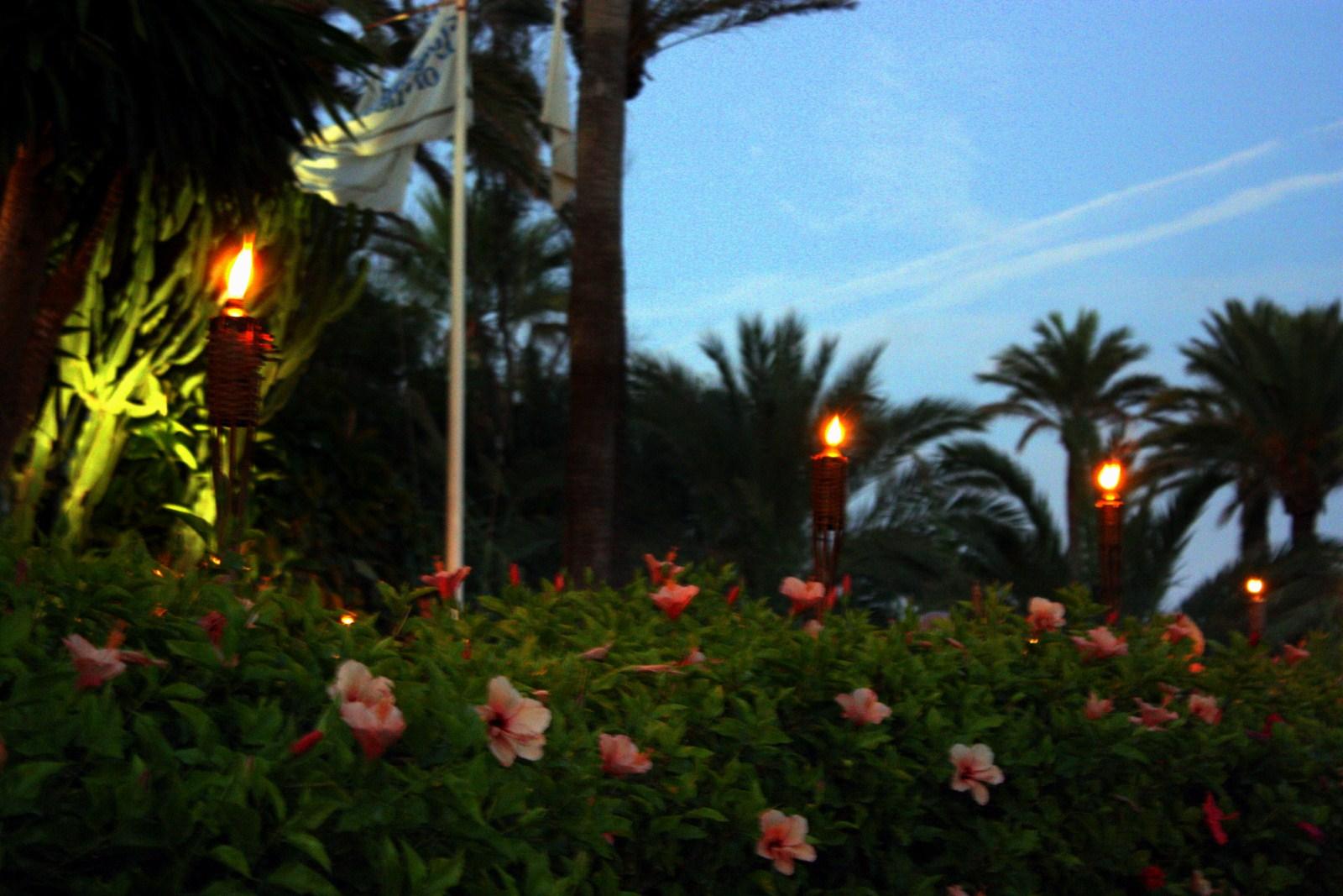 Marzua antorchas de jard n para las noches m s claras - Antorchas solares para jardin ...