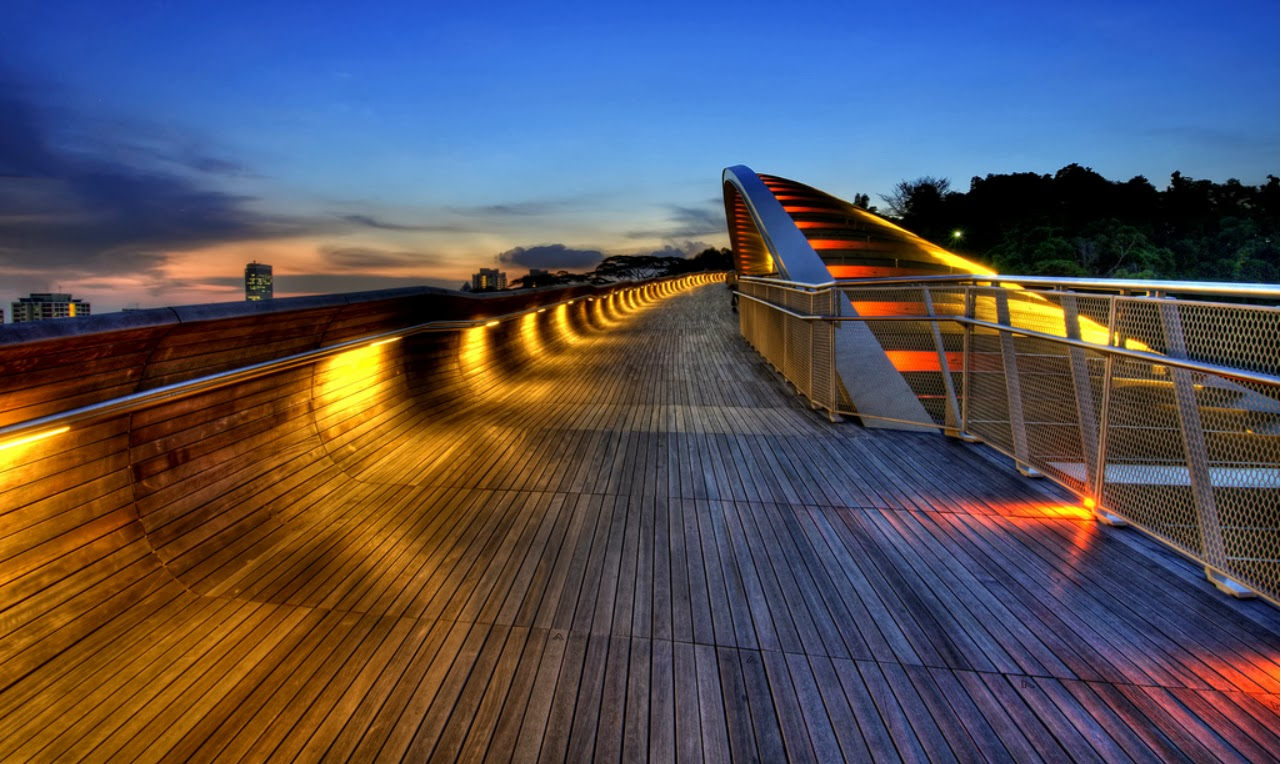 Eclectitude awesome bridge files henderson waves bridge for Design bridge singapore
